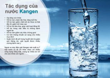 nước kangen, kagen hoàn nguyên